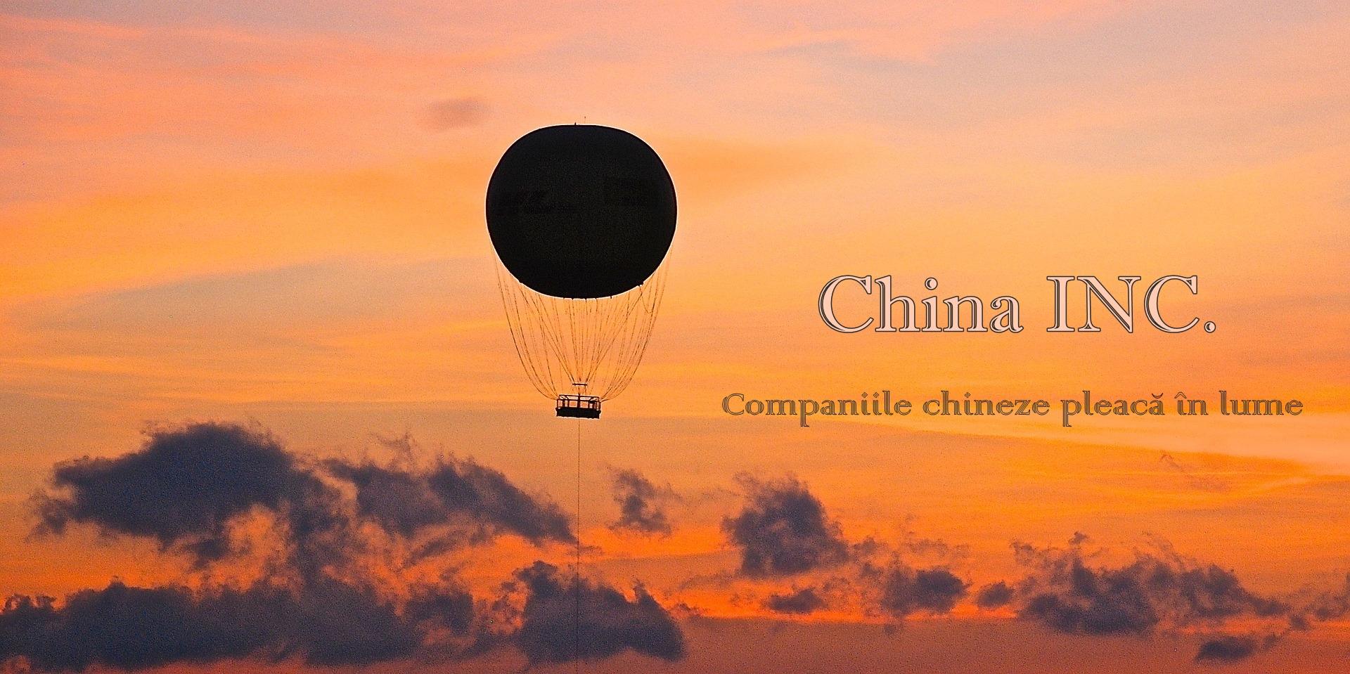 China INC RISAP