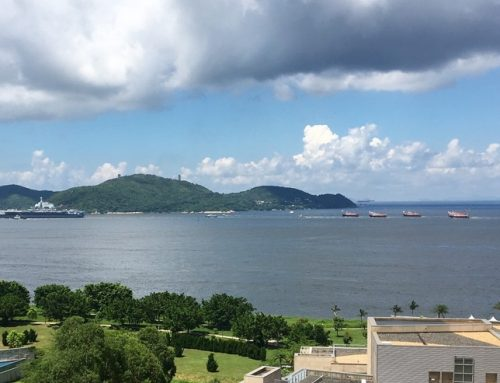 Portavionul Liaoning în Hong Kong: un mesaj din partea Chinei?