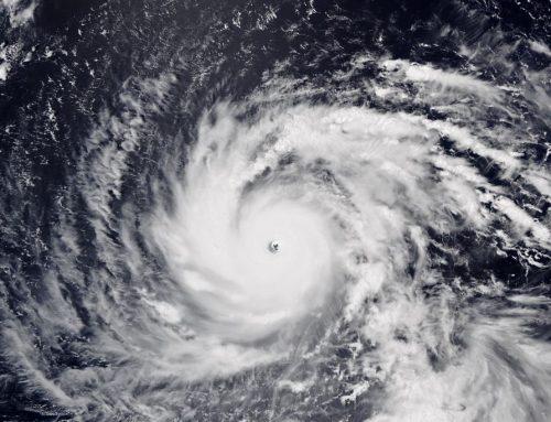 Japonia devastată de taifunul Jebi